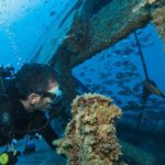 Murcia shipwreck
