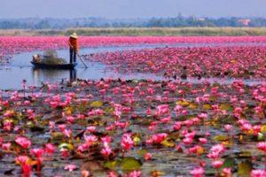 Isan Region, Thailand